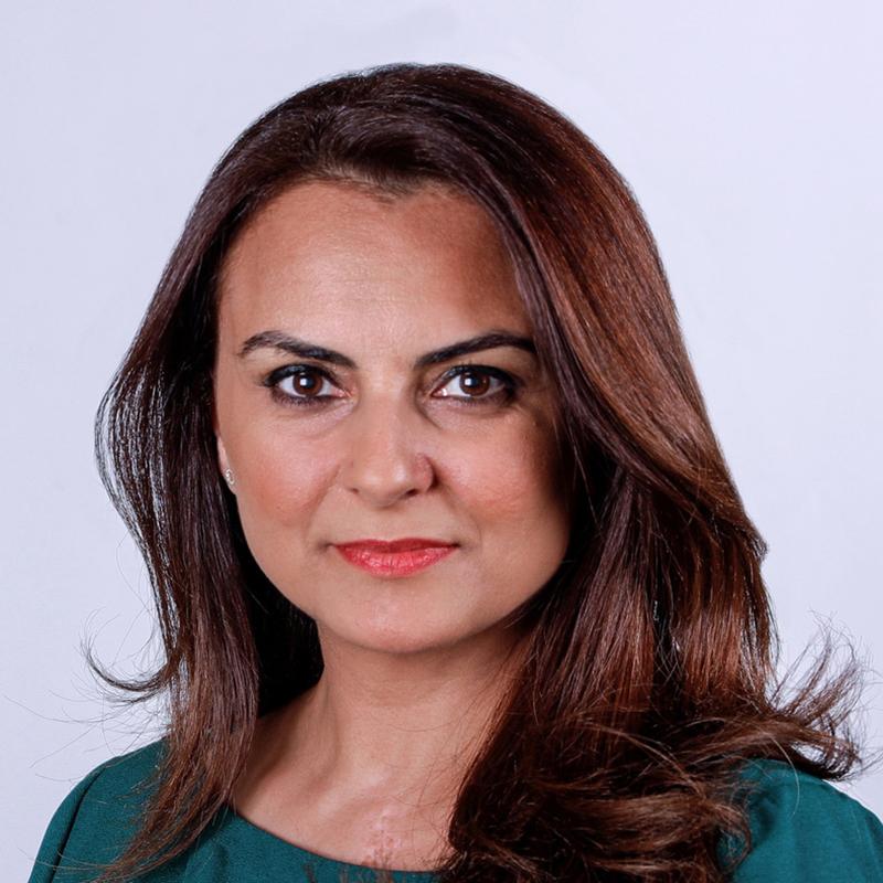 Mina Al-Oraibi Photo